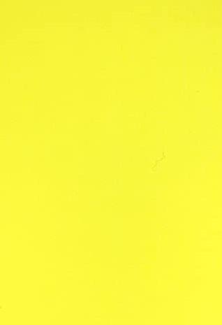 jaune.jpg (6 KB)